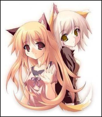 Imagens de Neko o/ Cats_neko